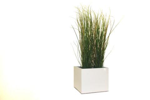 Plantenbakje Wit